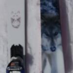 2017スキー試乗記 ReIsm WOLF